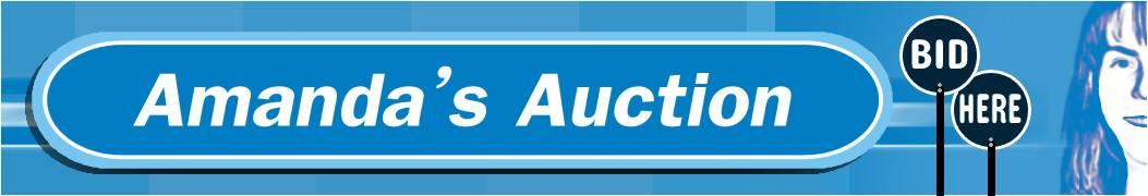 Amandas Auction